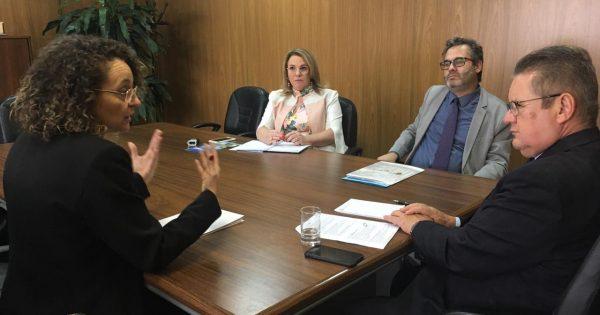 Segurança para motoristas de aplicativo é tema de reunião articulada entre vereador Roberto Robaina e deputada Luciana Genro com vice-governador