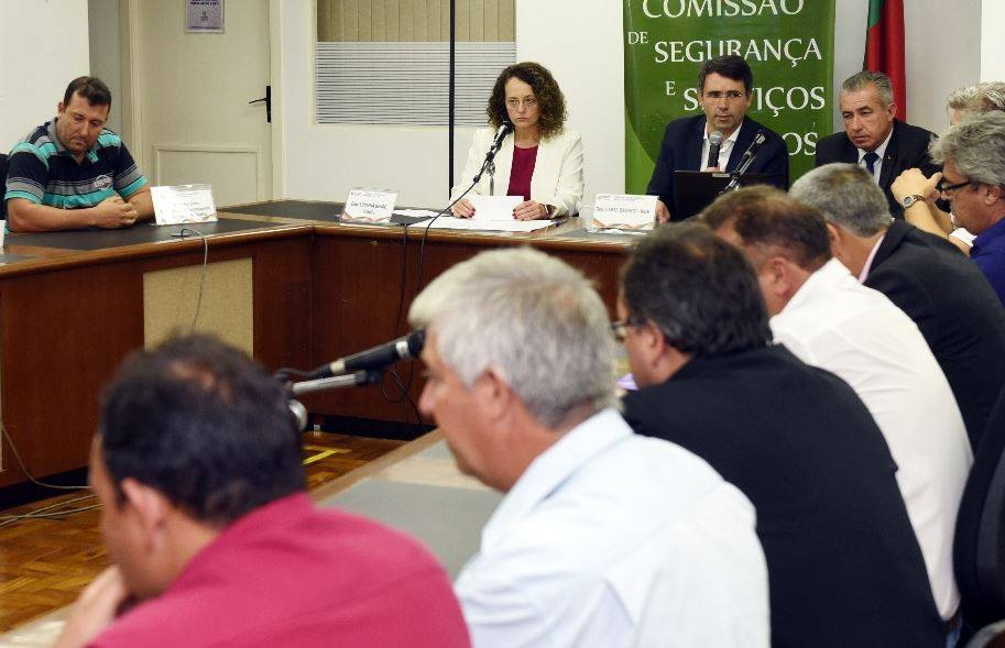 Luciana Genro realizou audiência pública para tratar das obras da ponte do Costa. | Foto: Celso Bender-Agência ALRS