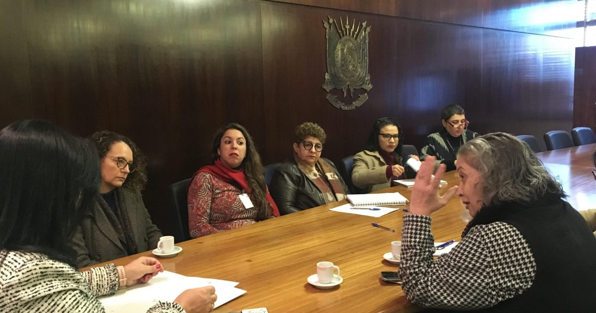 Conselho Estadual dos Direitos das Mulheres apresenta demandas na Assembleia Legislativa