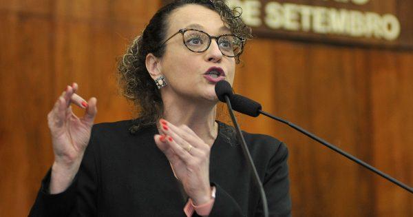 Projeto da deputada Luciana Genro que proíbe fogos de artifício com ruído é aprovado na AL
