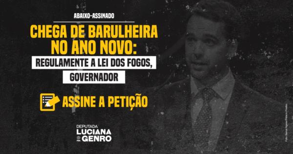 Abaixo-assinado pede regulamentação de lei da deputada Luciana Genro que proíbe fogos de artifício com barulho