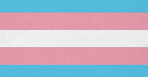 Luciana Genro cobra Prefeitura sobre verbas para ambulatório trans de Porto Alegre