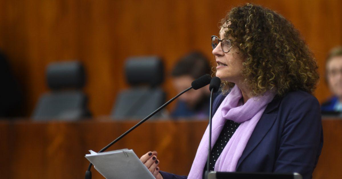 Emenda de Luciana Genro busca recursos para obras do Instituto de Educação