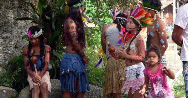 Luciana Genro cobra do governo medidas de combate à fome nas aldeias indígenas