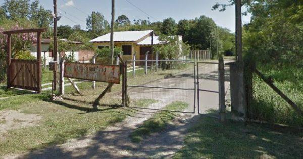 """Após receber relatos de """"situação desesperadora"""", Luciana Genro aciona MP e cobra prefeitura de Viamão sobre animais do Centro de Zoonoses"""
